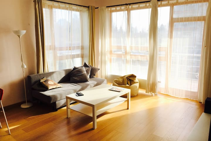 Cosy and sunny apartment (69m2) with balcony - Rīga - Apartment