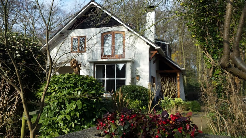 Peaceful, family home - Oegstgeest