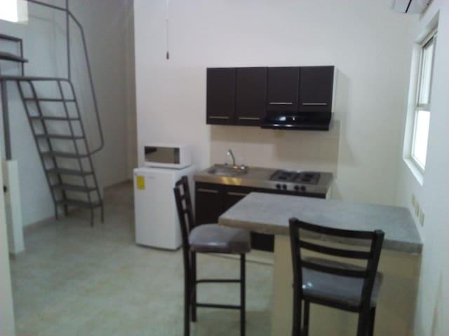 Departamento Unipersonal, Zona UANL - San Nicolás de los Garza - Apartment