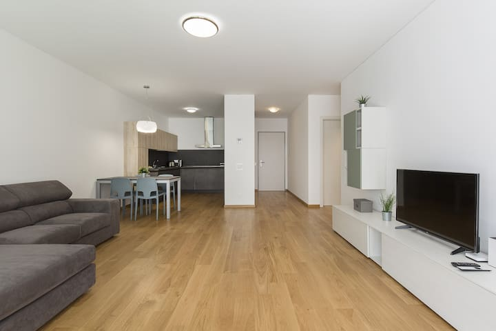 Bright Two-room apartment in the center (Agorà 3D)