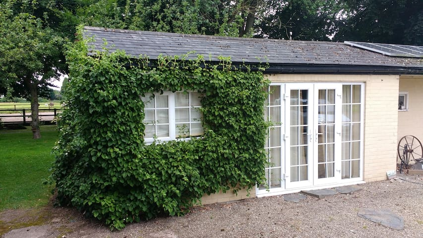 Beech Hill B&B –Quiet, Leafy, Self-contained Suite