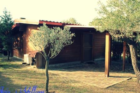 Villa Indaco - San Sostene Marina - Villa
