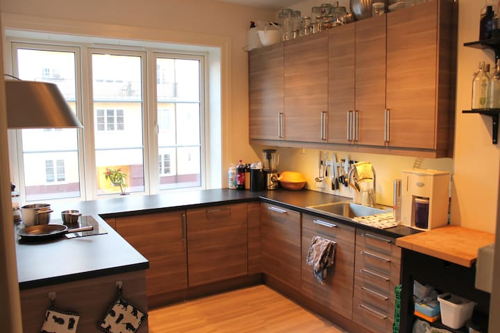Nice modern apartment at Sagene. - Oslo - Apartament