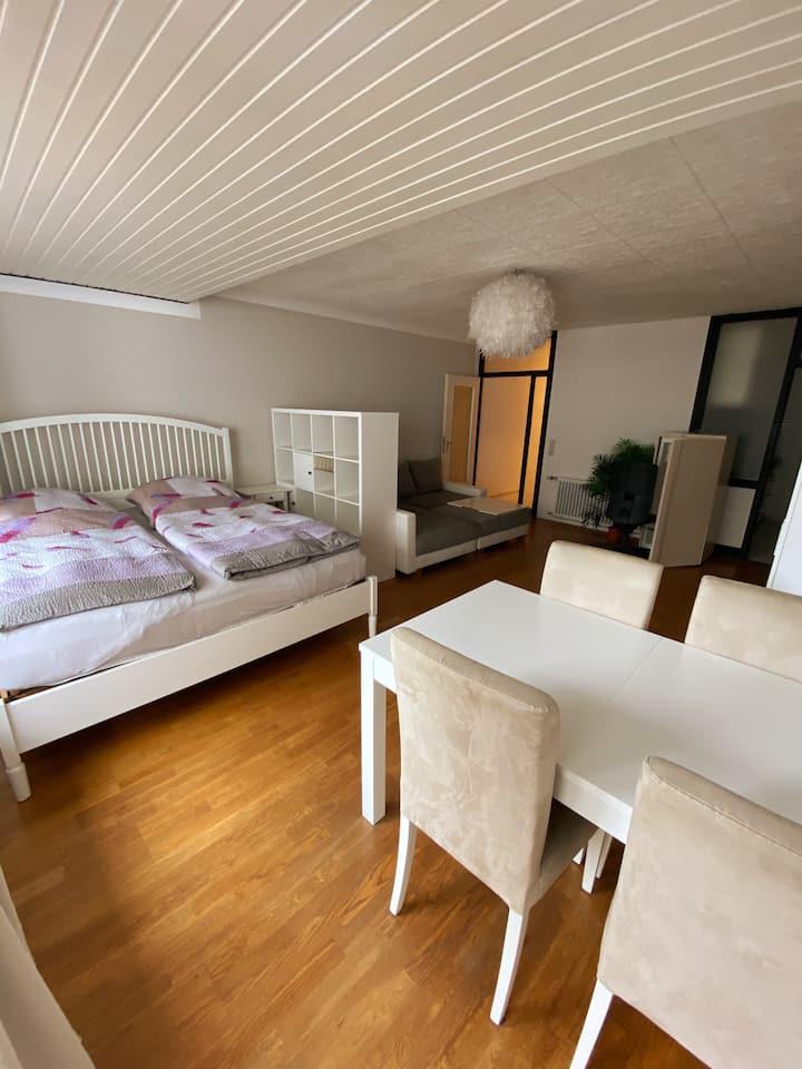 Sehr zentrale-moderne 1-Zimmer-Wohnung  Oldenburg