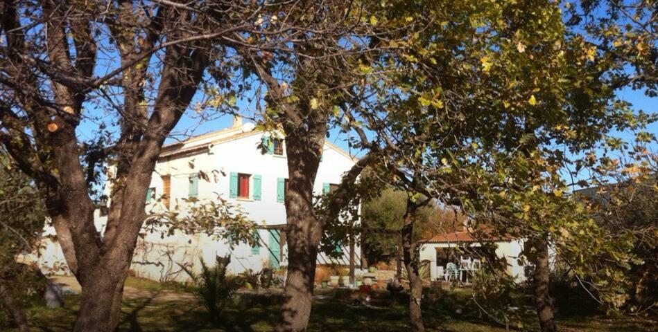 Algajola - appartement or 3 pers - Corbara - Huoneisto