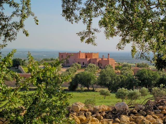 Privatisation du Domaine la colline des oliviers