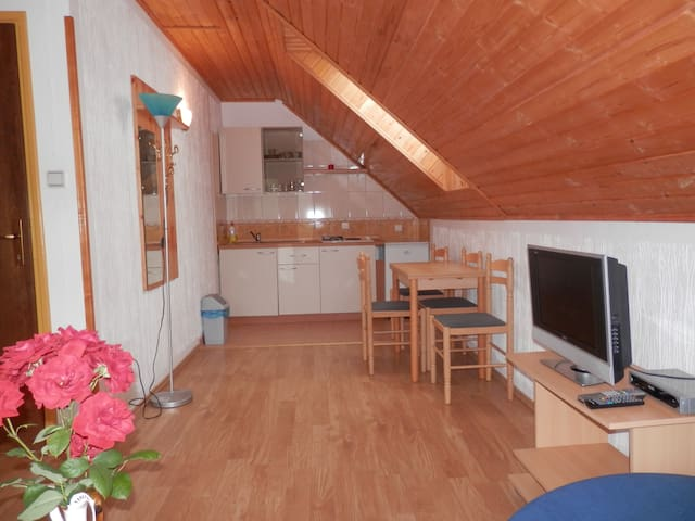 Mountain View Apart  with Parking - Korenica - Wohnung