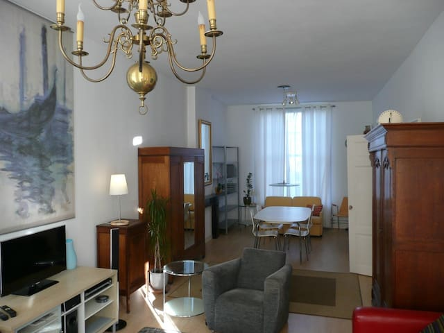 Affordable Premium Apartment - Haga - Apartament
