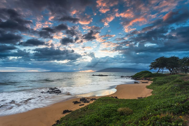 Island Style Ocean View Condo