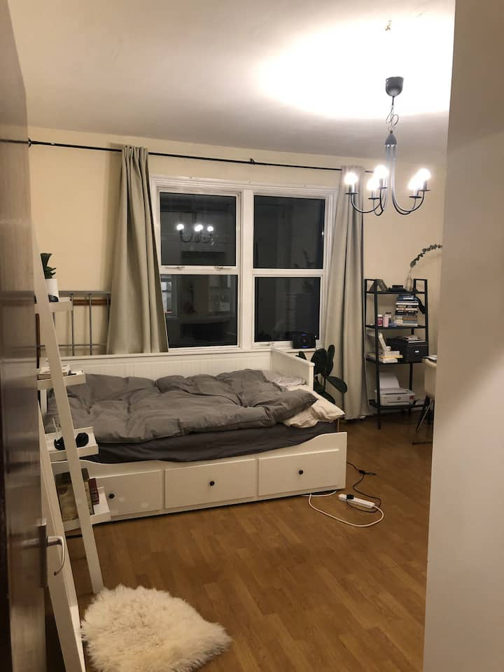 Warm, bright and spacious room in Hackney Central