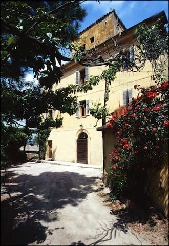 Gîte Amandulu - 8 personnes - Lama, Haute-Corse - Lejlighed