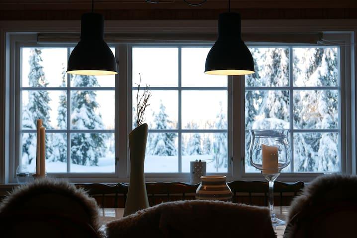Fin familiehytte på Rømåsen, Sjusjøen