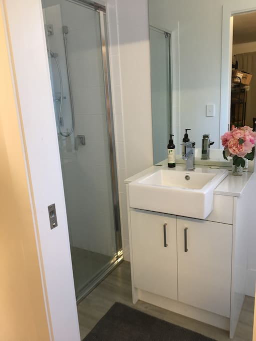 Large, New, Clean Shower and Toilet