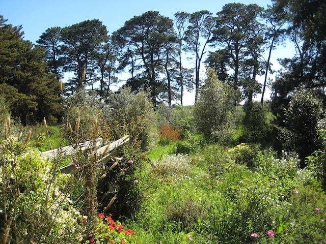 Otway foothills retreat - Birregurra - Huis