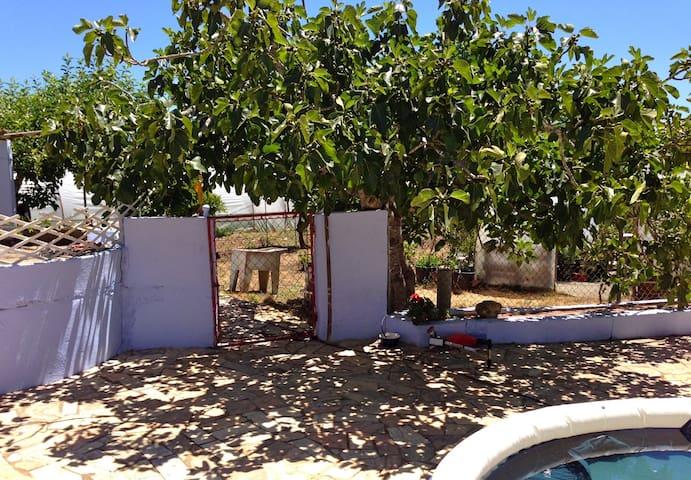 Cozy room on organic farm - Espiche - Casa