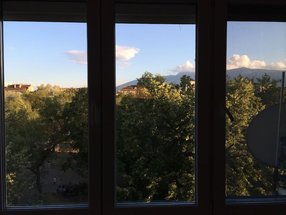 View on the park and mountain from the room.