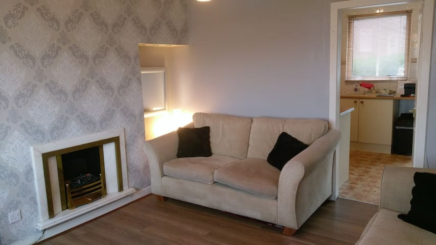 2 seater sofa and gas fireplace
