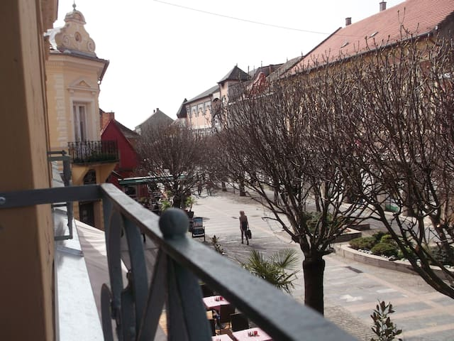New apartment downtown at walking str with 2 bikes - Keszthely - Lejlighed