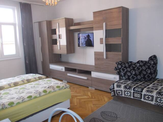 Price for  2 guests - flat in  Center of Szeged