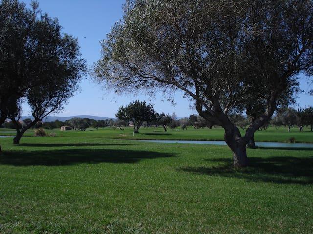 Golf, sol y vacaciones familiares