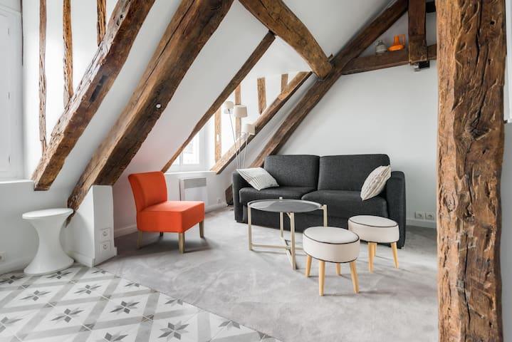 cosy studio in the heart of Paris - Paris-3E-Arrondissement - Huoneisto