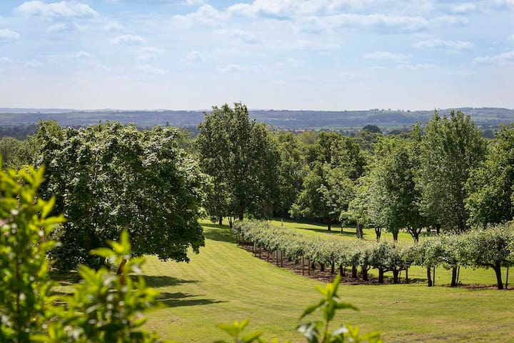 Beautiful views of the grounds, enjoy a walk around our 4 acre park