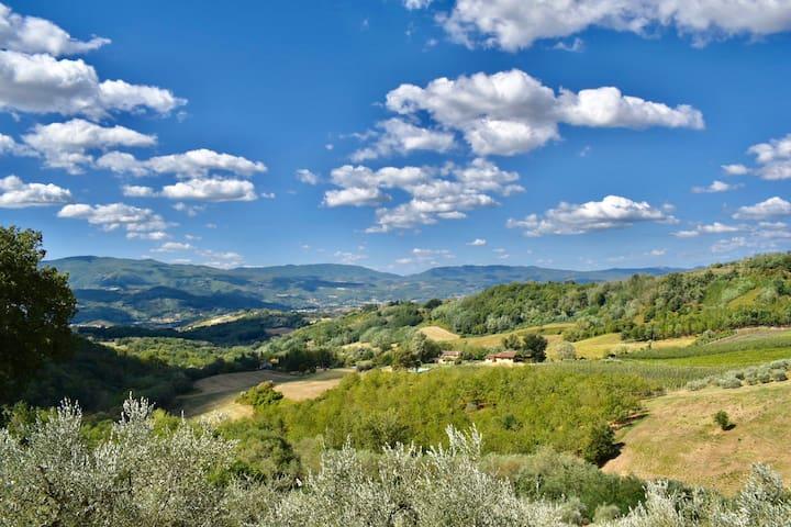 Questa è la meravigliosa vista sulle campagne del  Mugello che osserverete dalle finestre della casa e dal piccolo giardino privato.