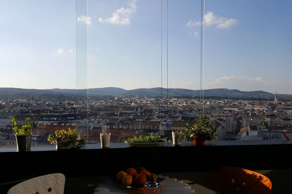GREAT VIEW OVER VIENNA!