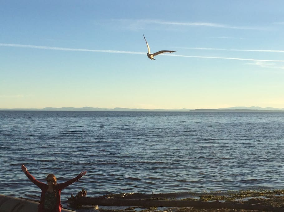 The view from White Rock's east beach--just a short stroll away.