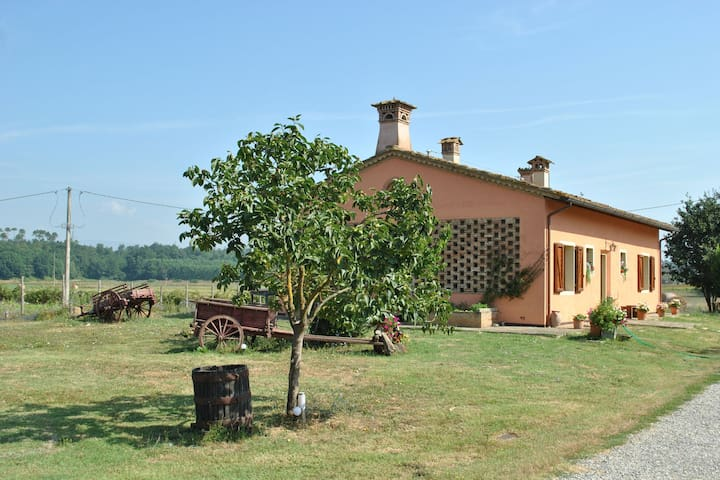 On the farm, in contact with animal and nature but close to cultural attractions