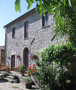 Stone Cottage Agriturismo Le Spighe - Proceno - Bed & Breakfast