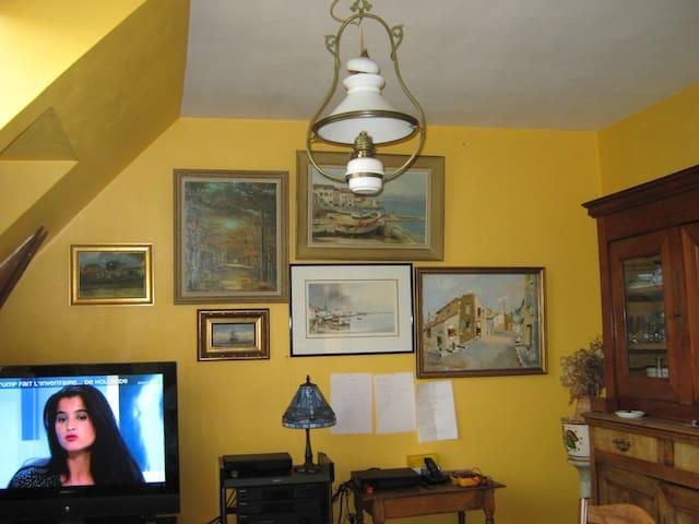 chambre avec vue sur jardin - Rennes - Bed & Breakfast
