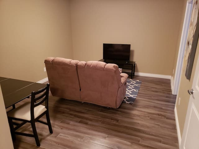 Living room with TV and pullout couch