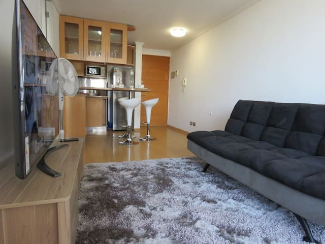 Nice and Confortable Apartment in Providencia