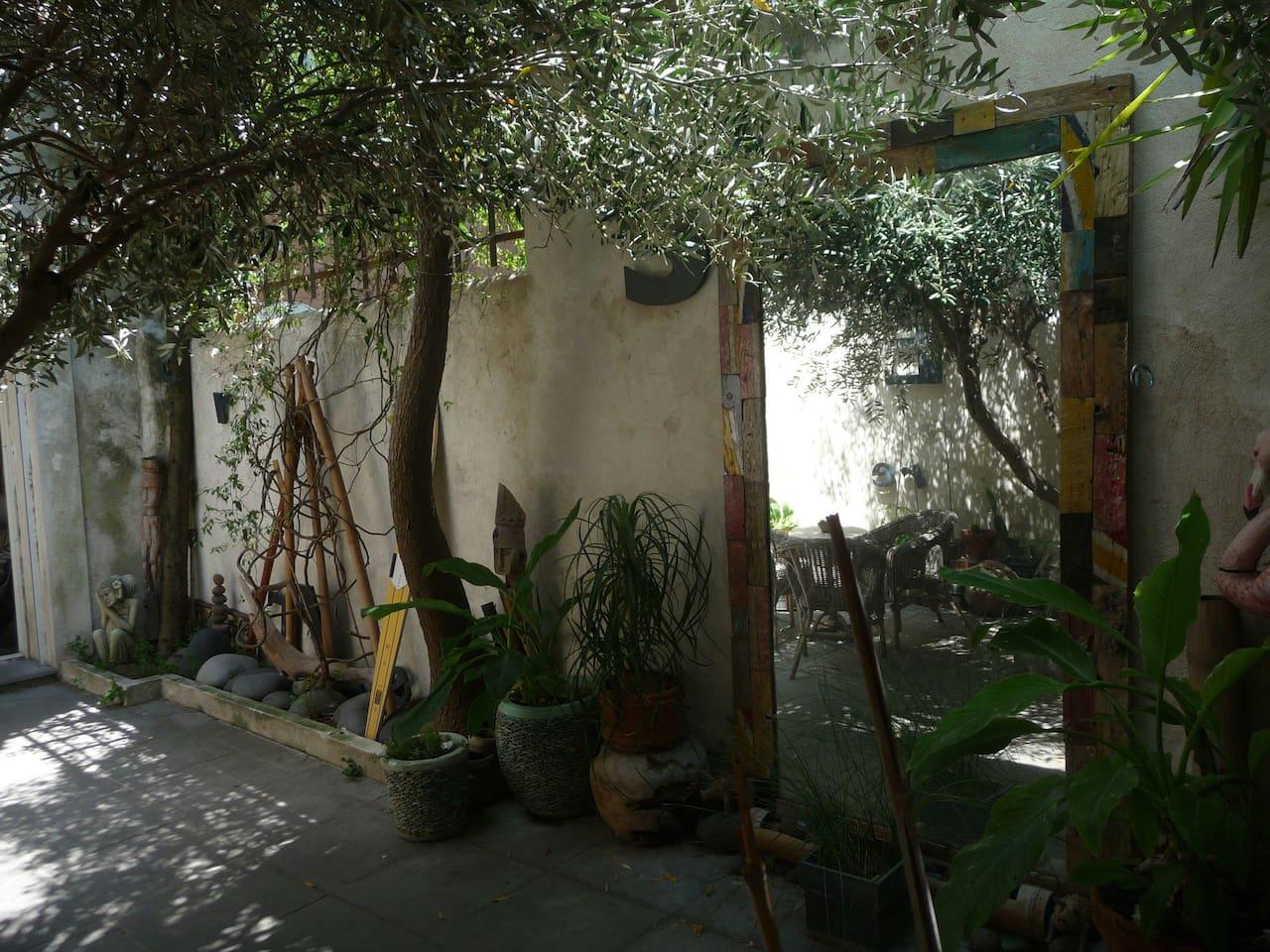 Patio a l'ombre de l'olivier