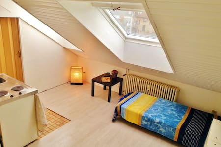 Helles City-Appartment (3) - Mannheim - Apartment