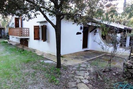 Argentario - Giannella: Villa sul mare - Giannella