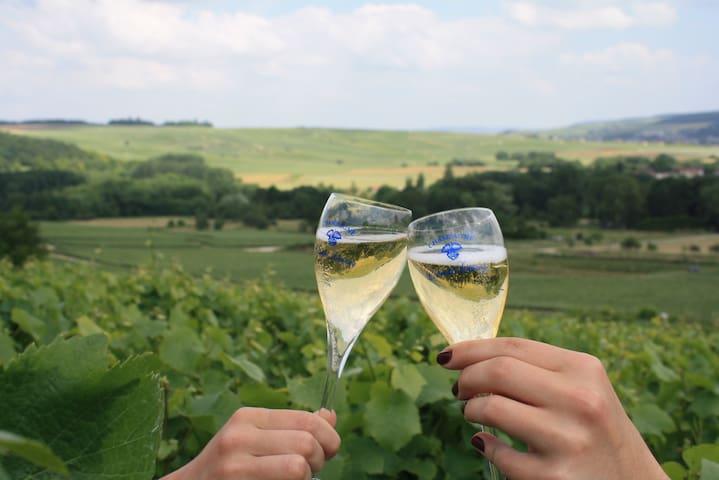 """Champagne's cottage :   """" la Chayotte """""""