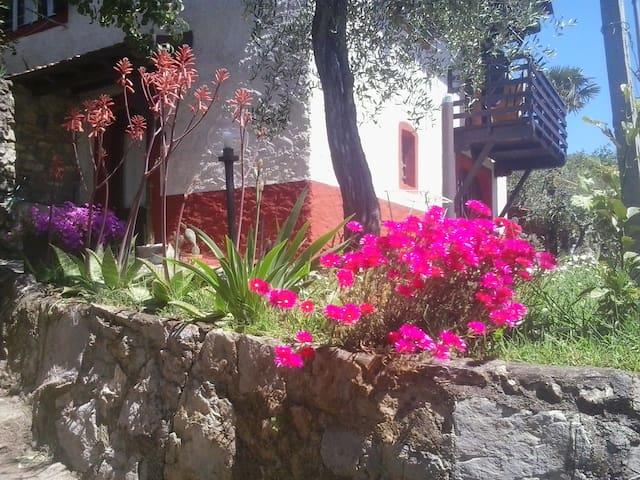 La fattoria di Nonna Eugenia