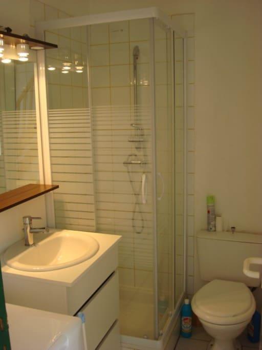 Salle d'eau avec douche, lavabo et lave-linge