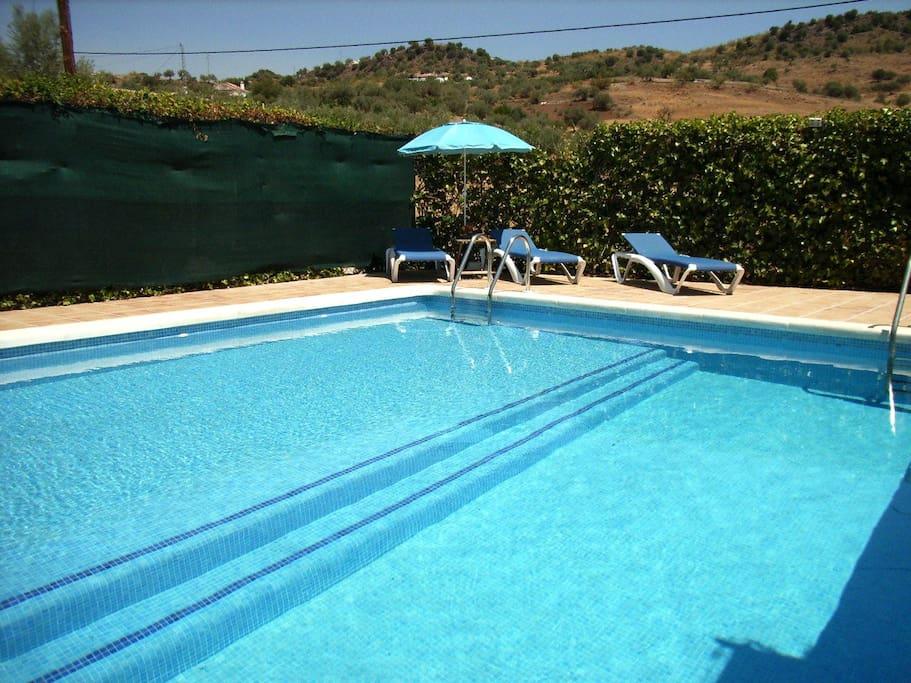 Zona de la piscina con tumbonas.