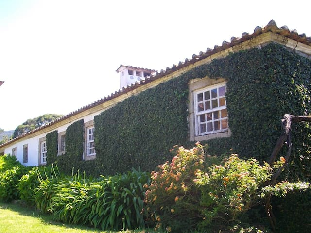 Secluded traditional cottage 2 - Santa Leocádia - Apartamento