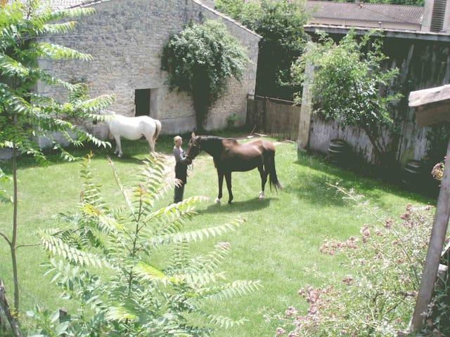 Gite au champs de foire - Saint-Laurent-Médoc - Dom