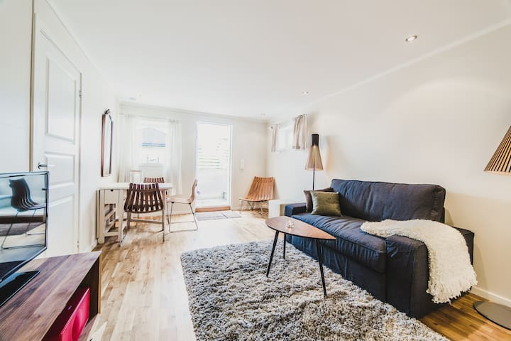 Newly renovated flat with garden and free parking