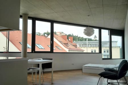 This neat and cool flat in the hip hood called Lend,  has a nice half-panoramic view on the castle of Graz and its surroundings. Since it is situated at the beginning of the pedestrian zone, it is the perfect place to start your visit in Graz.