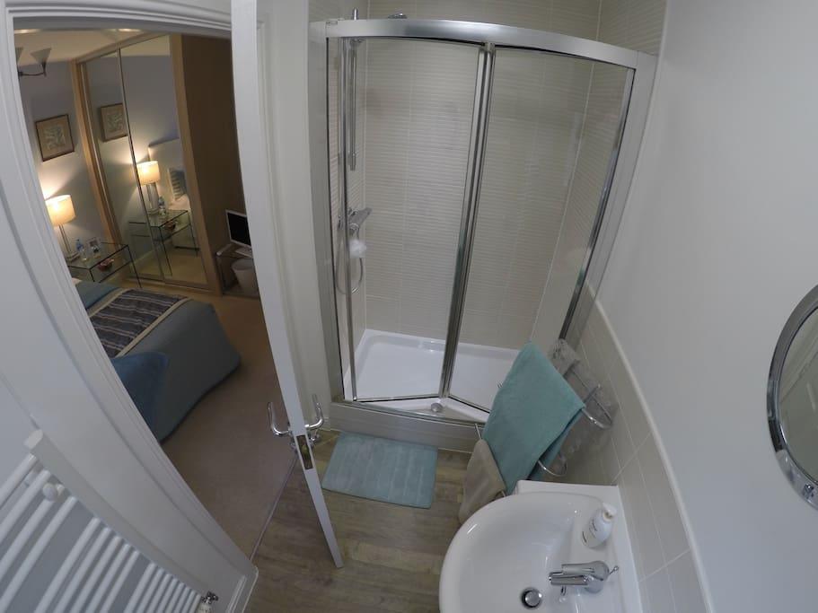 Private en suite shower room looking into bedroom.