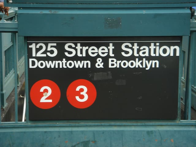 The closest subway is the 2/3 at 125th. Less than a 5 minute walk to the 2/3. The 4/5/6 and A/B/C/D subway lines at 125th are less than a 10 minute walk away. These trains will take you directly to Time Square or to the Statue of Liberty or to World Trade