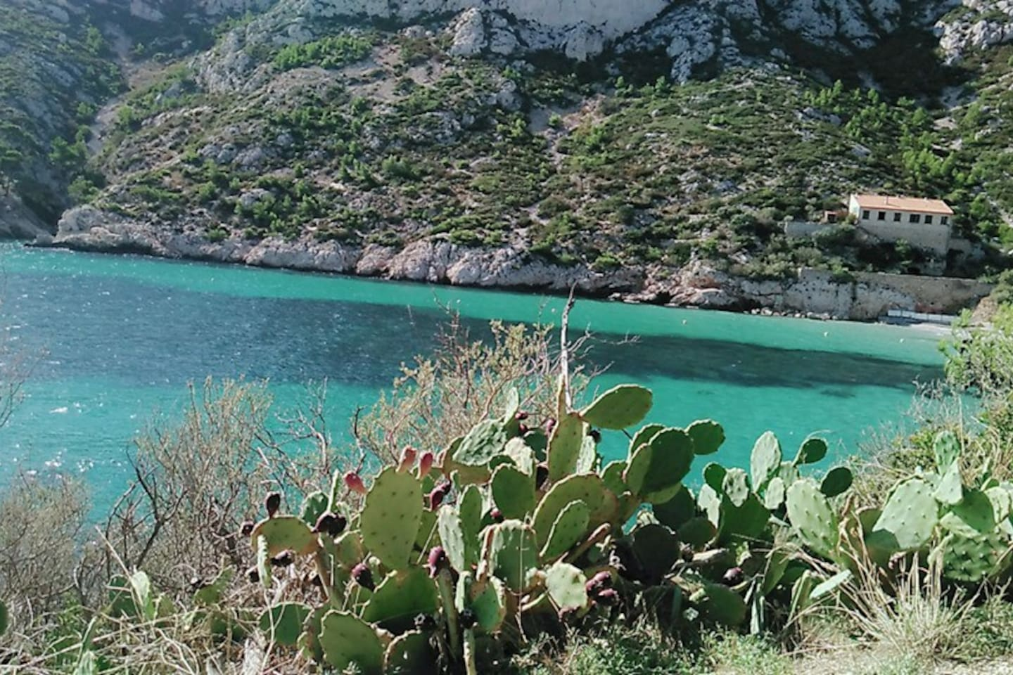 Calanques. Only 15 minutes by bus from home or by car. And a beautyful walk :-)