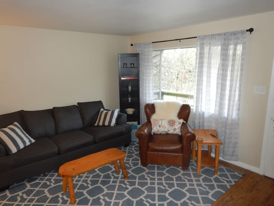 Cozy living room with pull out couch!