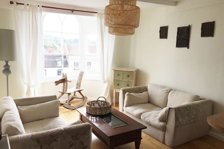 Central and Sunny 2 bedroom flat in Marlborough - Marlborough - Leilighet